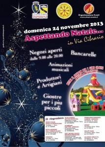 locandina festa novembre
