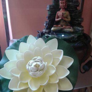 fontanella buddha